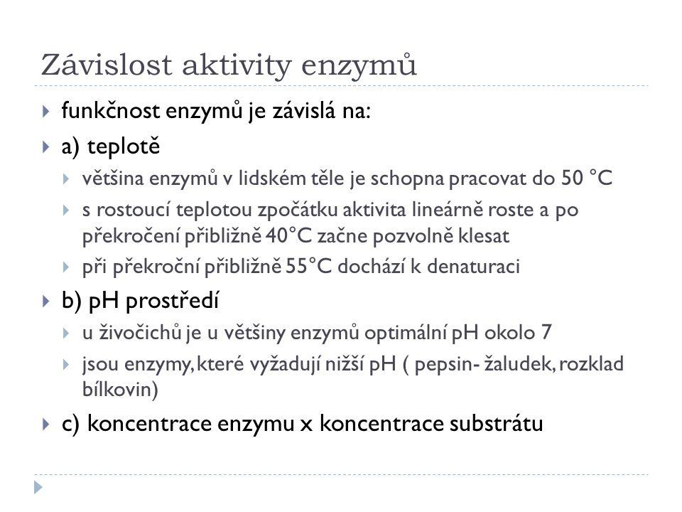 Závislost aktivity enzymů