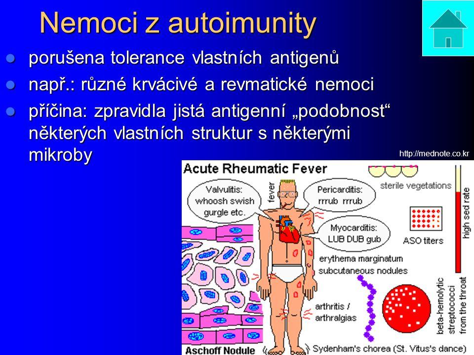 Nemoci z autoimunity porušena tolerance vlastních antigenů