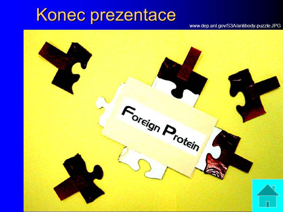 Konec prezentace www.dep.anl.gov/S3A/antibody-puzzle.JPG