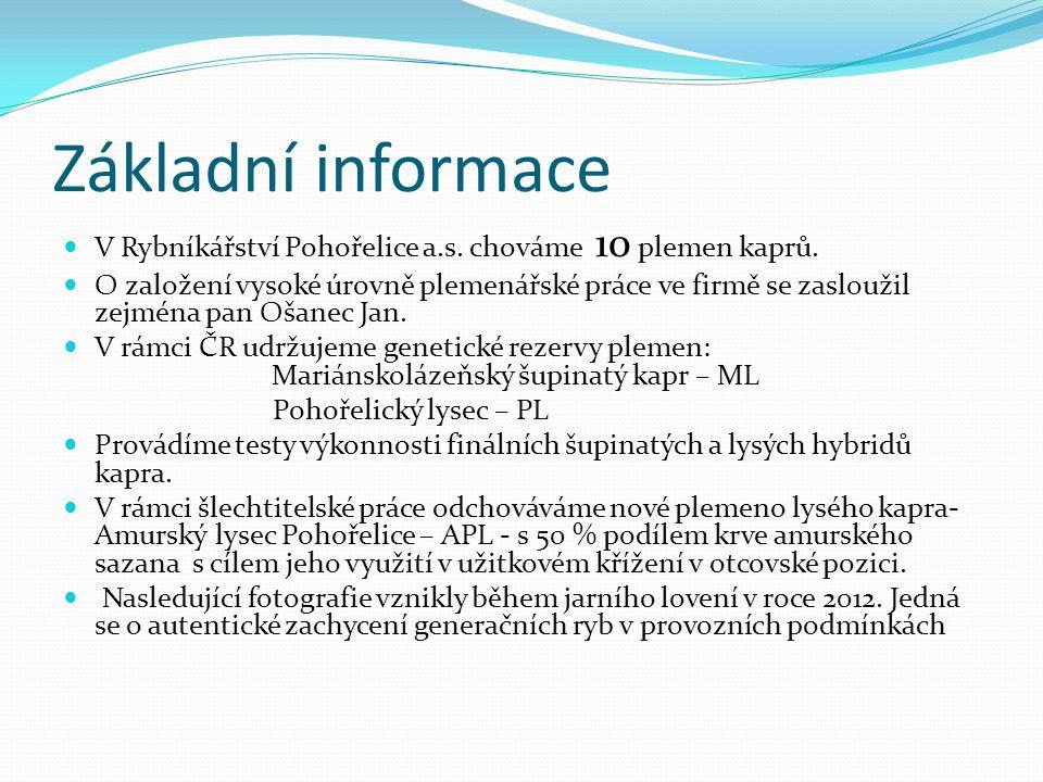 Základní informace V Rybníkářství Pohořelice a.s. chováme 10 plemen kaprů.