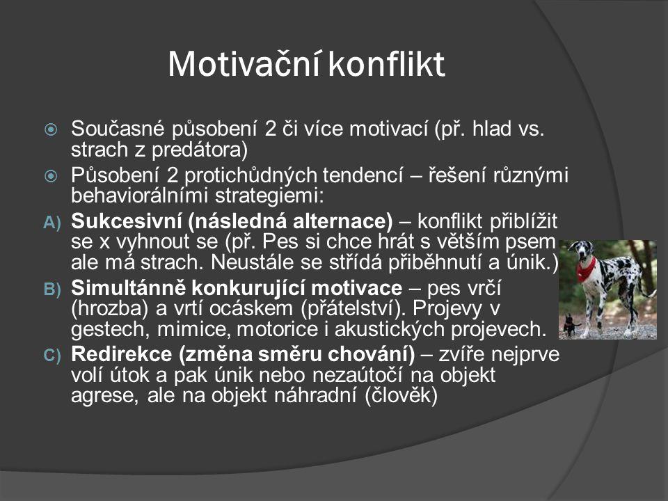 Motivační konflikt Současné působení 2 či více motivací (př. hlad vs. strach z predátora)