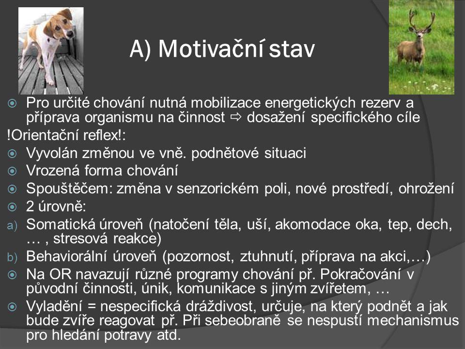 A) Motivační stav Pro určité chování nutná mobilizace energetických rezerv a příprava organismu na činnost  dosažení specifického cíle.