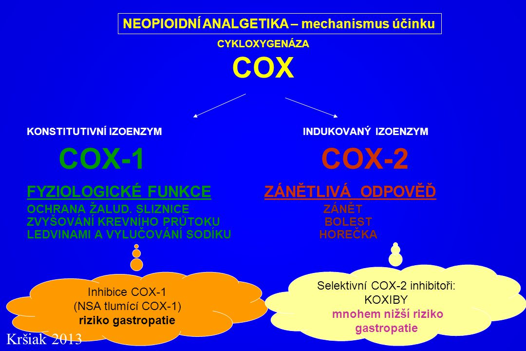 COX-1 COX-2 FYZIOLOGICKÉ FUNKCE ZÁNĚTLIVÁ ODPOVĚĎ Kršiak 2013