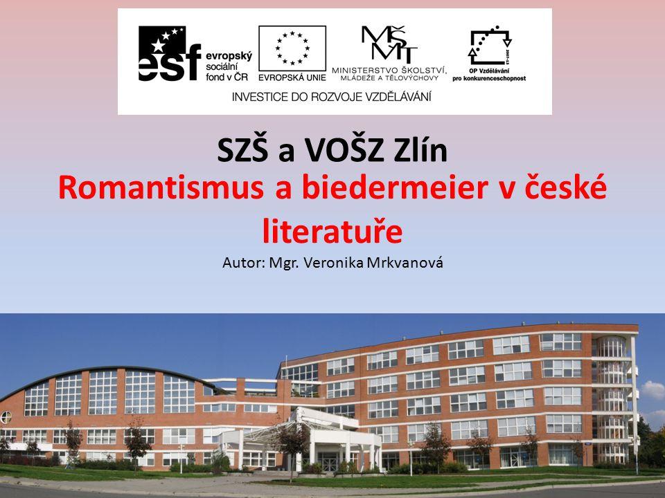 ZA, 2. ročník / Literatura 19. století/ Mgr. Veronika Mrkvanová