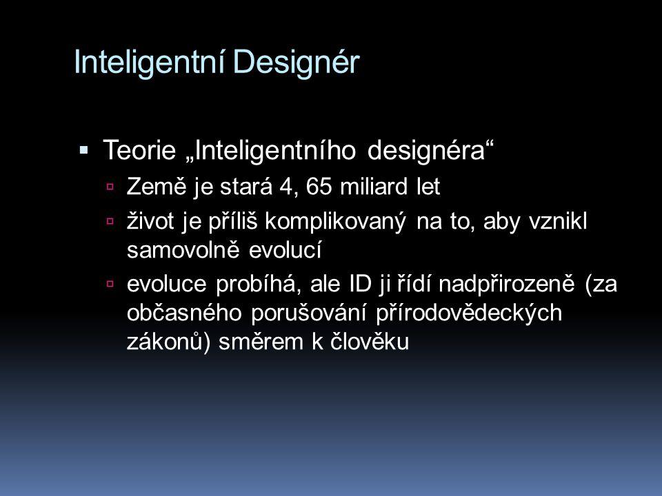 Inteligentní Designér