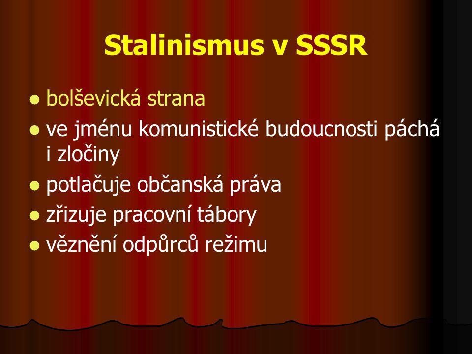 Stalinismus v SSSR bolševická strana