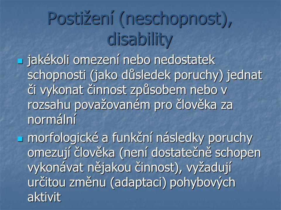 Postižení (neschopnost), disability