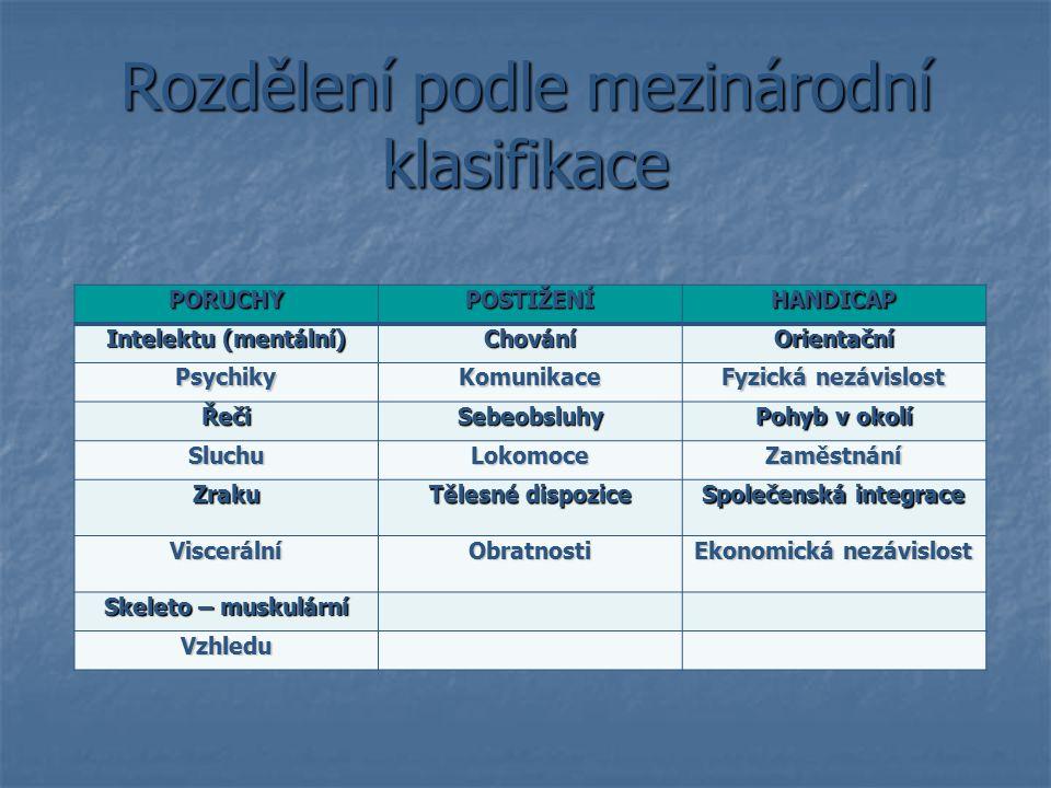 Rozdělení podle mezinárodní klasifikace