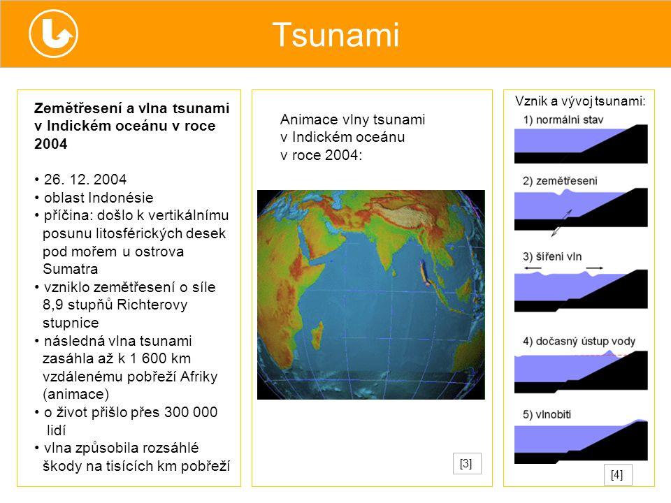 Tsunami Zemětřesení a vlna tsunami v Indickém oceánu v roce 2004