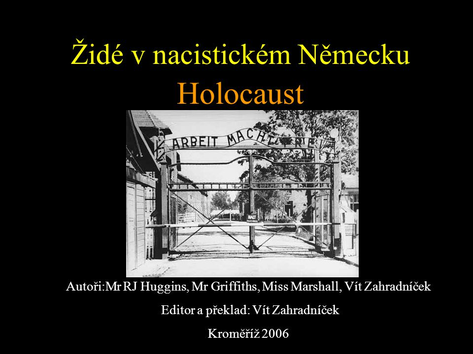 Židé v nacistickém Německu