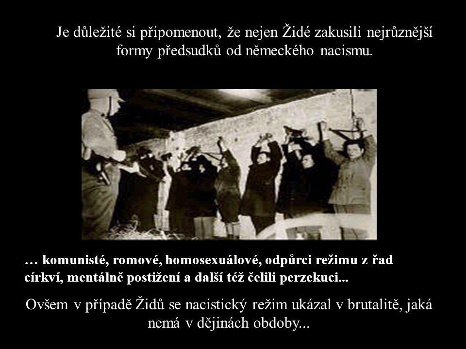 Je důležité si připomenout, že nejen Židé zakusili nejrůznější formy předsudků od německého nacismu.