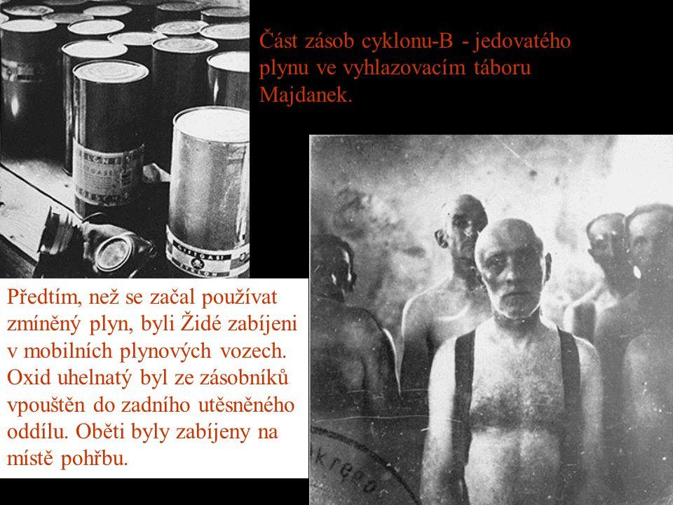 Část zásob cyklonu-B - jedovatého plynu ve vyhlazovacím táboru Majdanek.