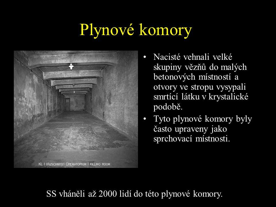 SS vháněli až 2000 lidí do této plynové komory.