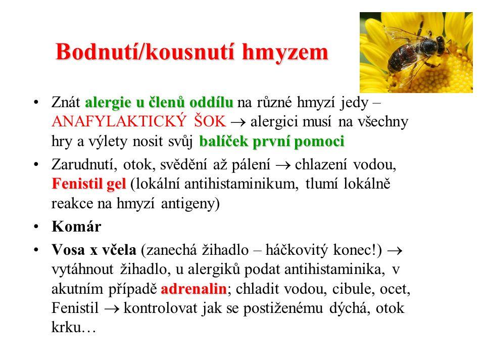 Bodnutí/kousnutí hmyzem
