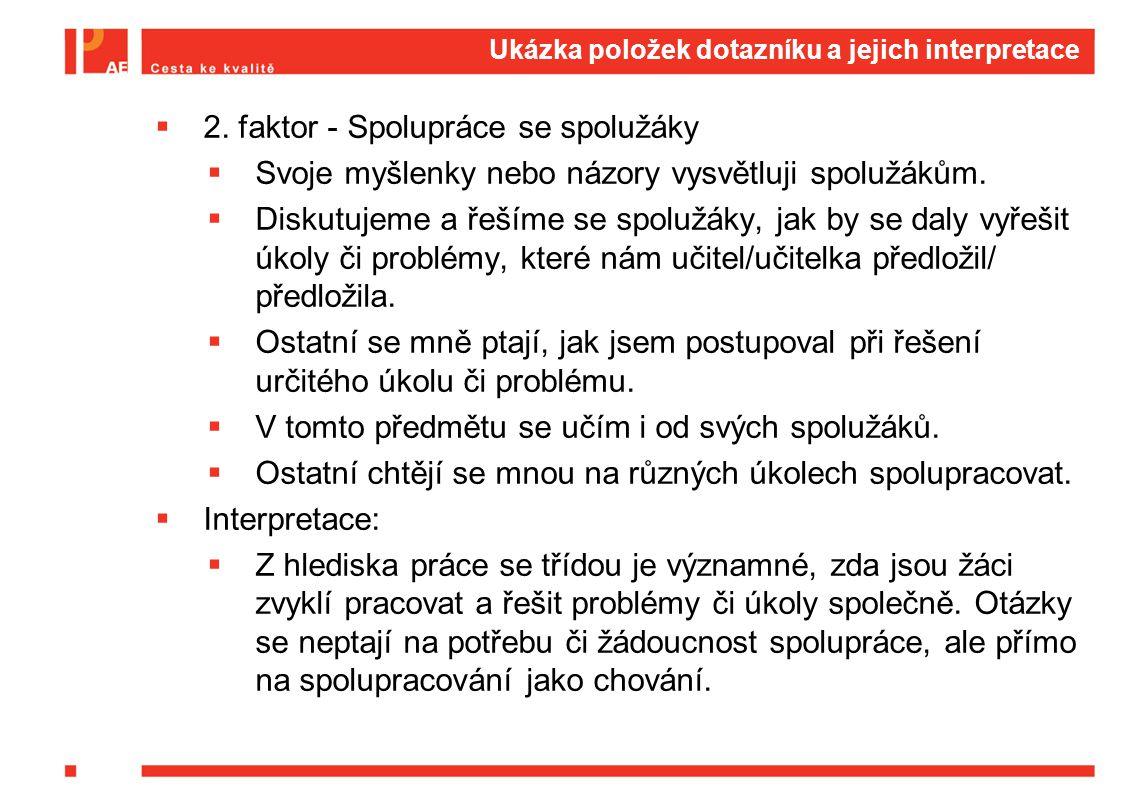 Ukázka položek dotazníku a jejich interpretace