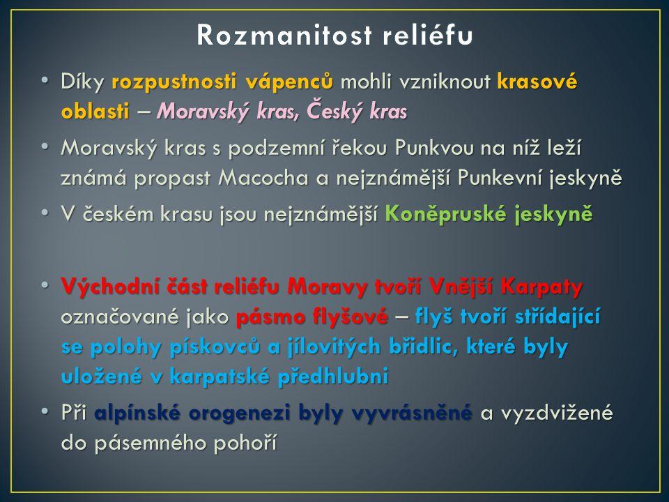 Rozmanitost reliéfu Díky rozpustnosti vápenců mohli vzniknout krasové oblasti – Moravský kras, Český kras.