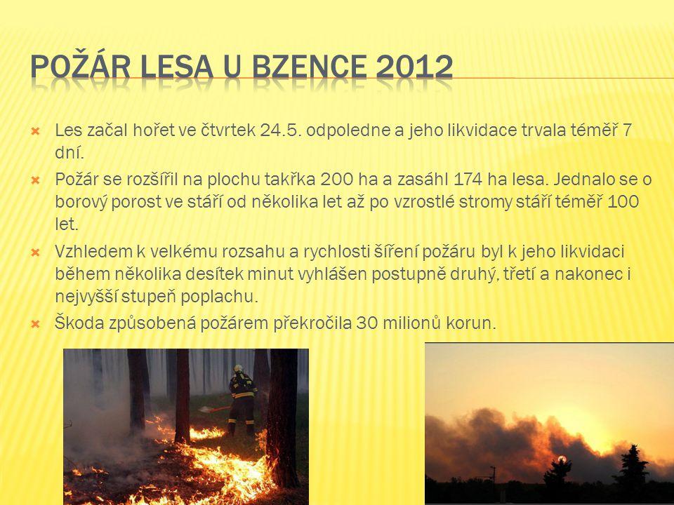 Požár lesa u bzence 2012 Les začal hořet ve čtvrtek 24.5. odpoledne a jeho likvidace trvala téměř 7 dní.