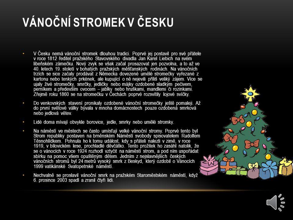 Vánoční stromek v Česku