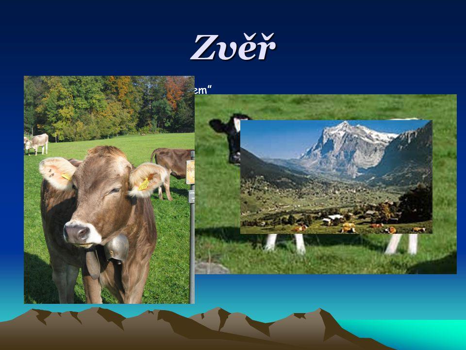 Zvěř Švýcarským zvířecím znakem je kráva.