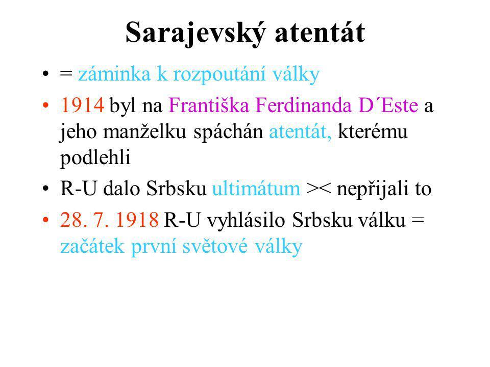 Sarajevský atentát = záminka k rozpoutání války