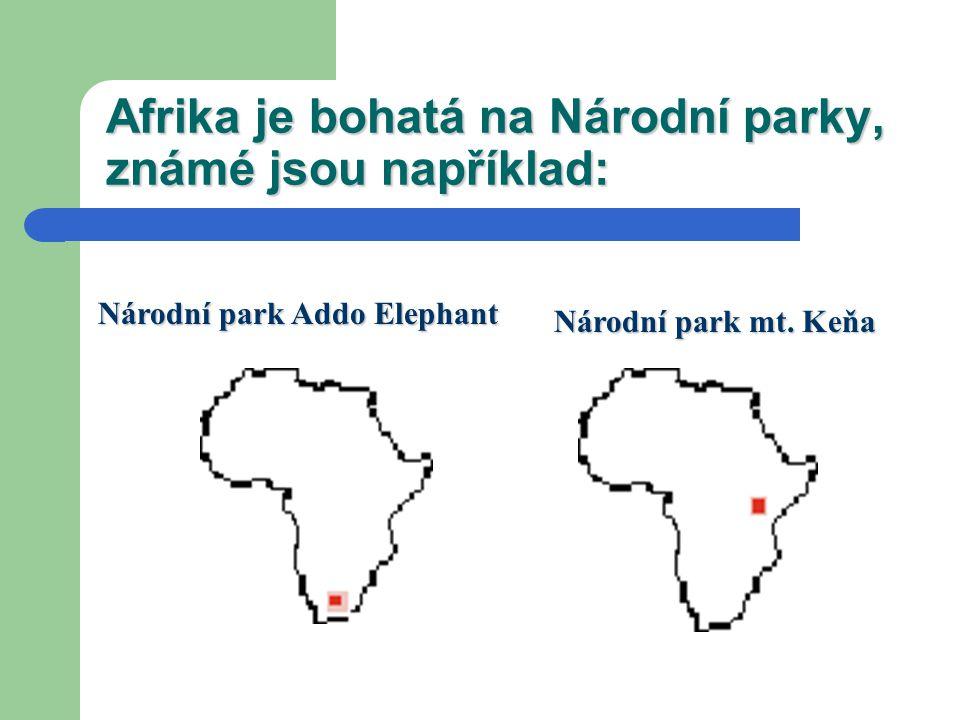 Afrika je bohatá na Národní parky, známé jsou například: