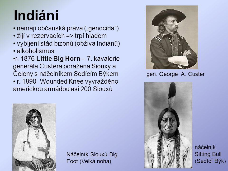 """Indiáni nemají občanská práva (""""genocida )"""