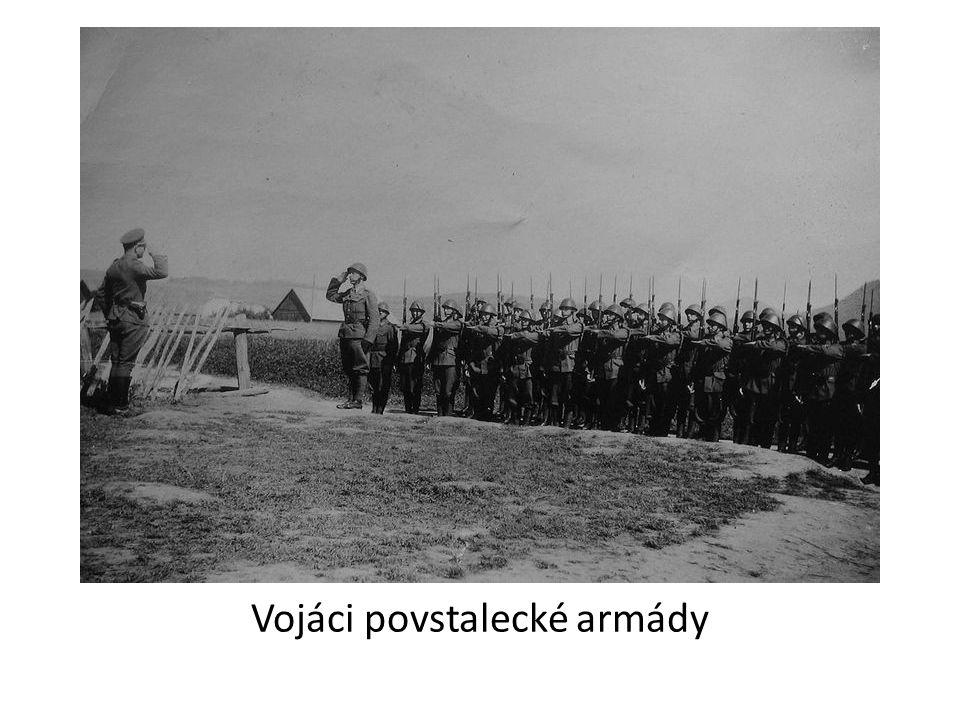 Vojáci povstalecké armády