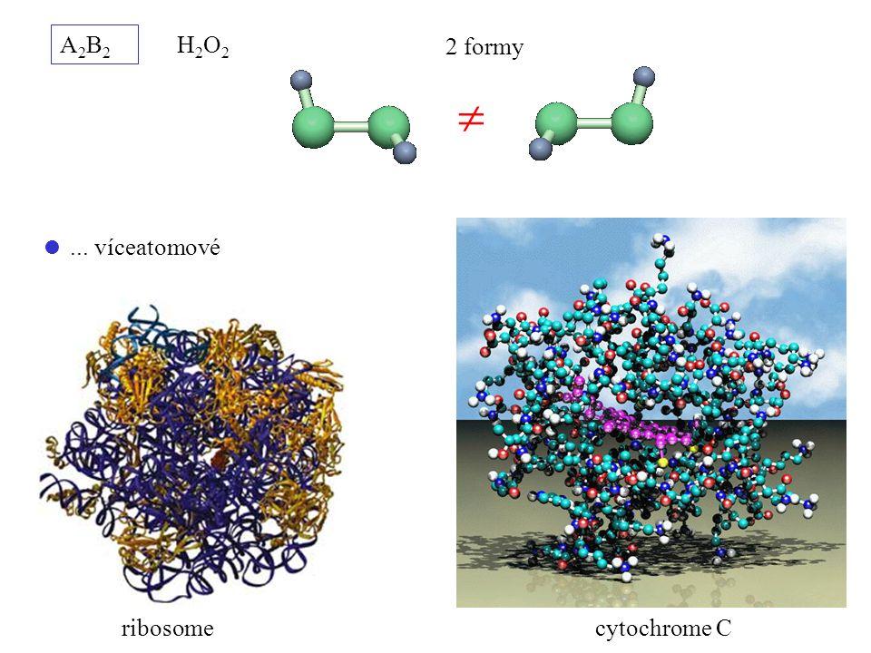 A2B2 H2O2 2 formy   ... víceatomové ribosome cytochrome C