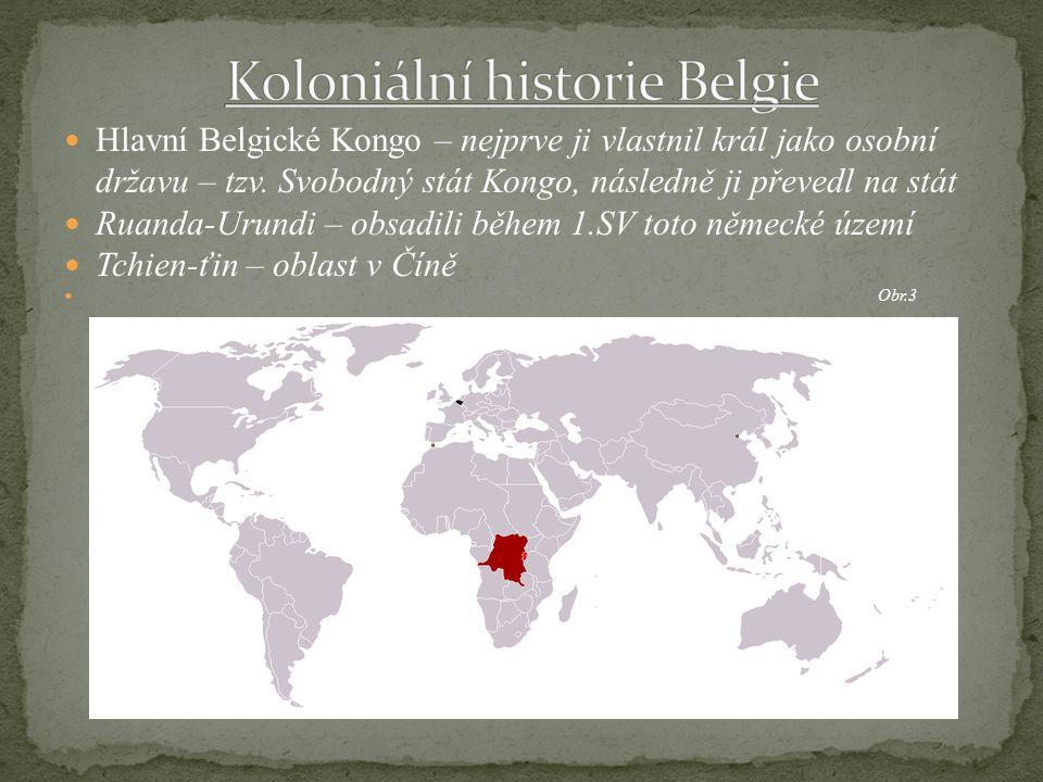Koloniální historie Belgie