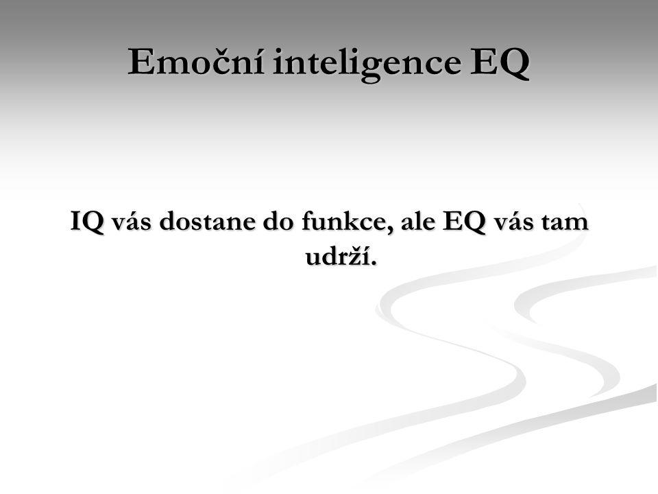 IQ vás dostane do funkce, ale EQ vás tam udrží.