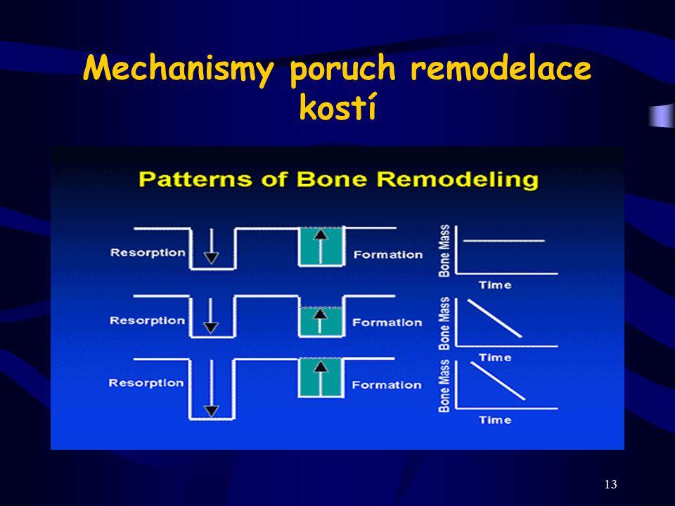 Mechanismy poruch remodelace kostí