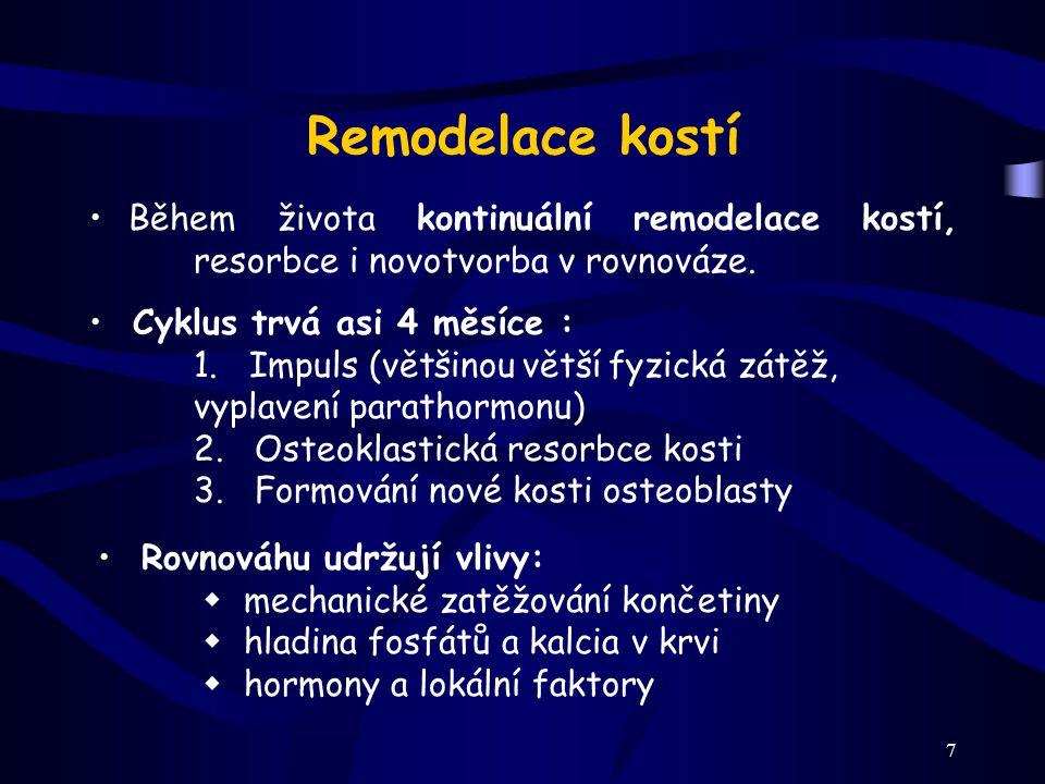 Remodelace kostí Během života kontinuální remodelace kostí, resorbce i novotvorba v rovnováze. Cyklus trvá asi 4 měsíce :