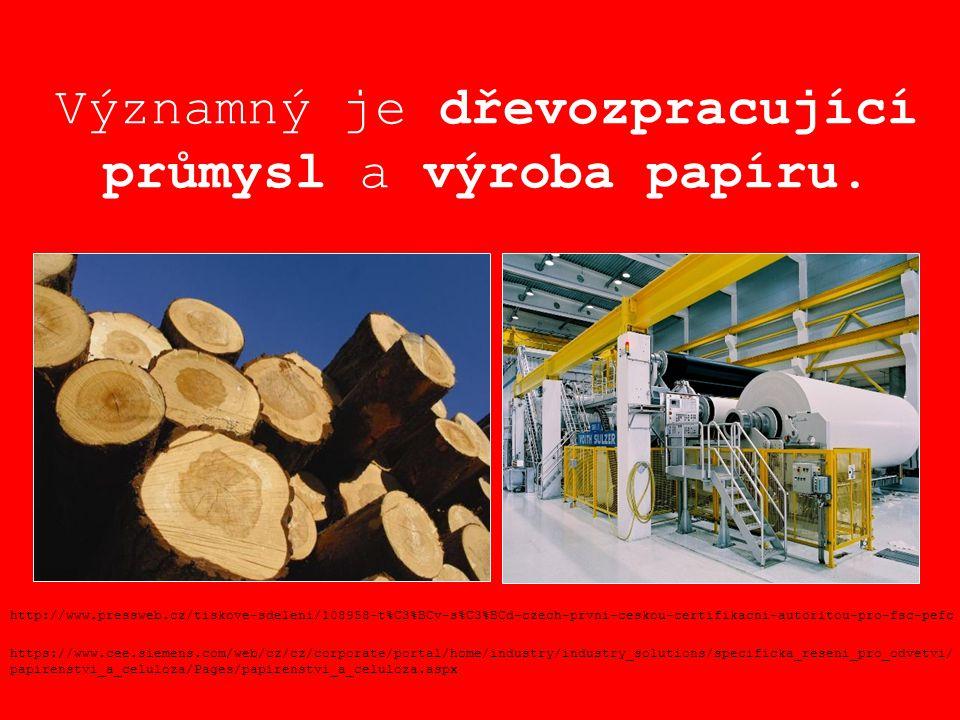 Významný je dřevozpracující průmysl a výroba papíru.