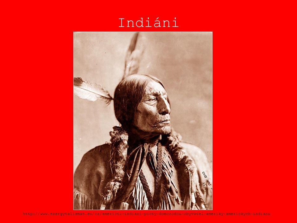 Indiáni http://www.energytalisman.eu/cz/americti-indiani-pocty-domorodcu-obyvatel-ameriky-americkych-indianu.