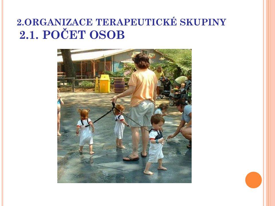 2.ORGANIZACE TERAPEUTICKÉ SKUPINY 2.1. POČET OSOB