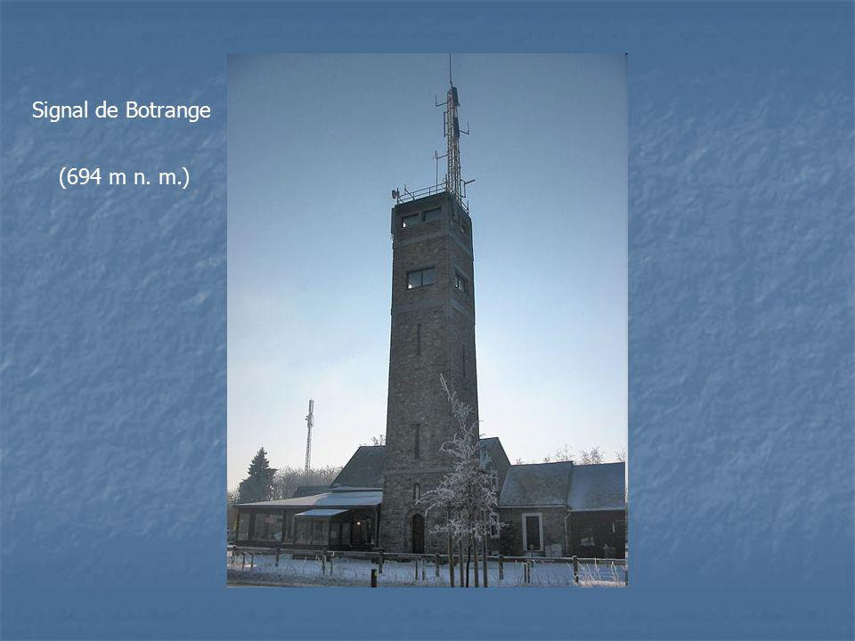 Signal de Botrange (694 m n. m.)