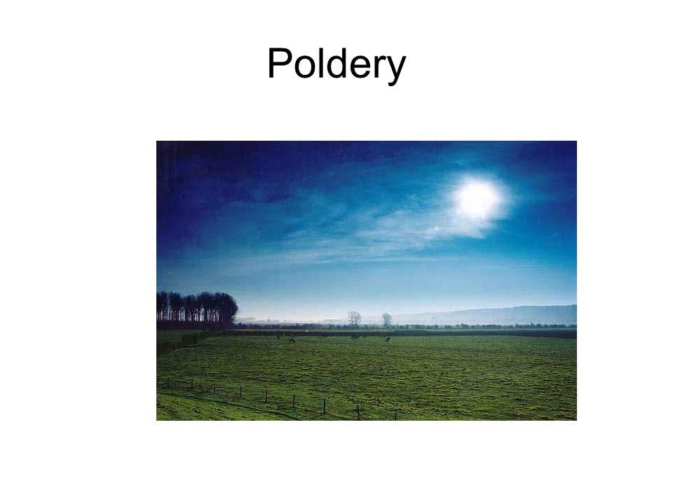 Poldery