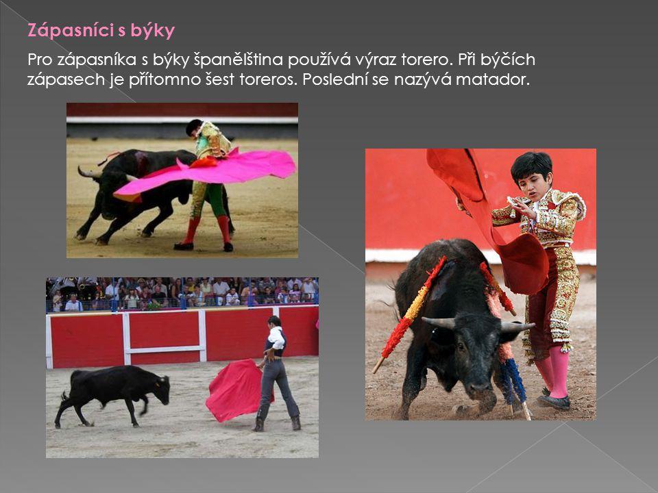 Zápasníci s býky Pro zápasníka s býky španělština používá výraz torero.