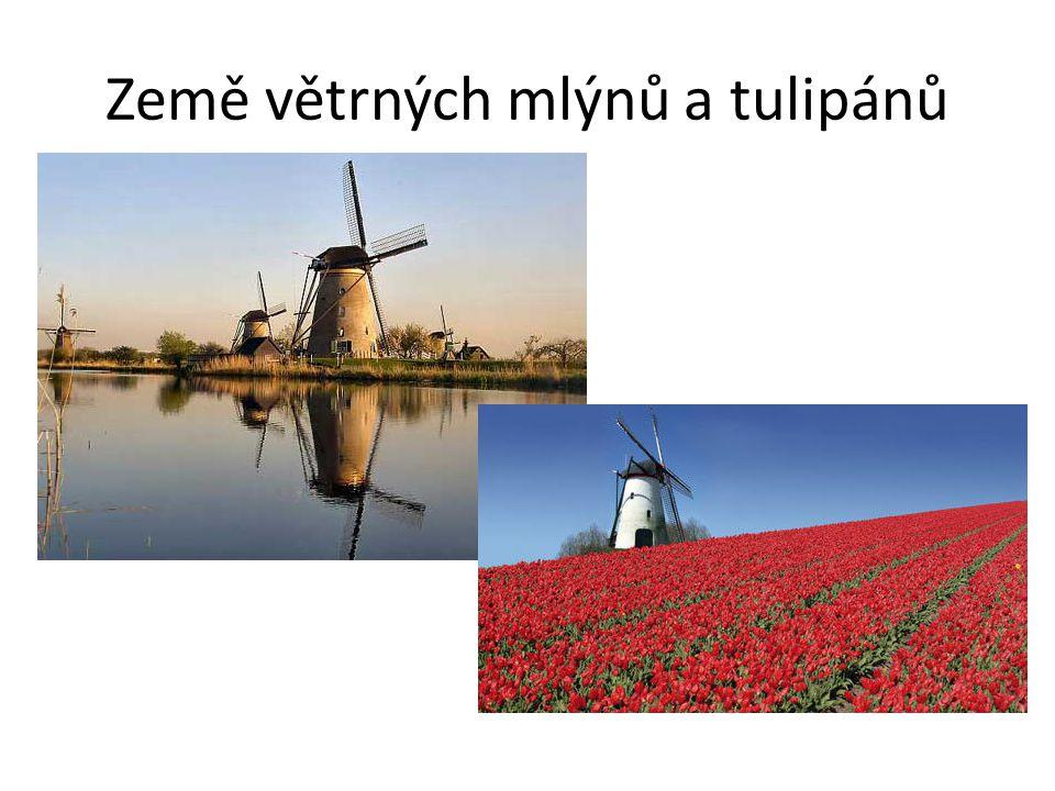 Země větrných mlýnů a tulipánů