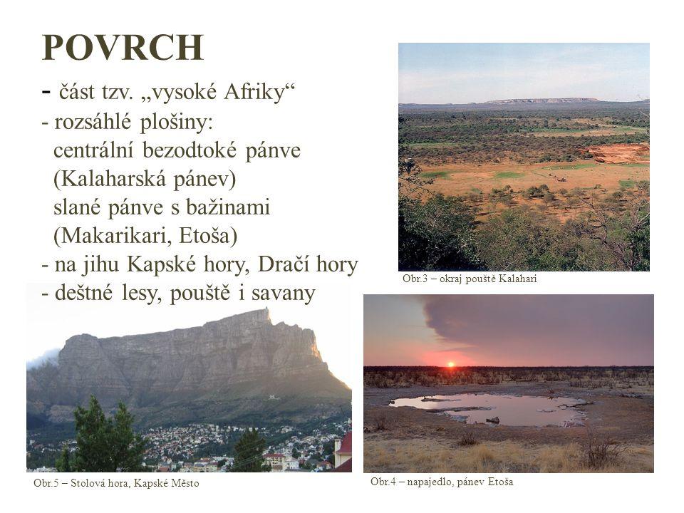 """POVRCH - část tzv. """"vysoké Afriky - rozsáhlé plošiny: centrální bezodtoké pánve (Kalaharská pánev) slané pánve s bažinami (Makarikari, Etoša) - na jihu Kapské hory, Dračí hory - deštné lesy, pouště i savany"""