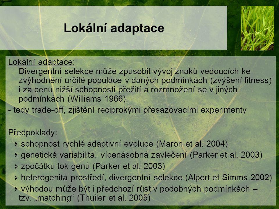 Lokální adaptace