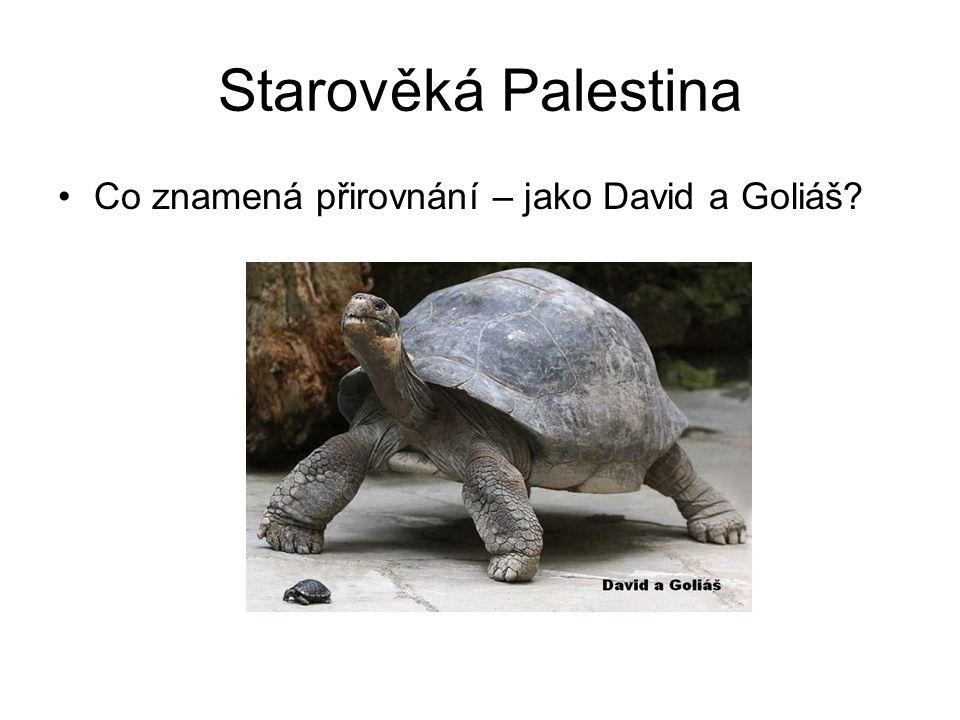 Starověká Palestina Co znamená přirovnání – jako David a Goliáš