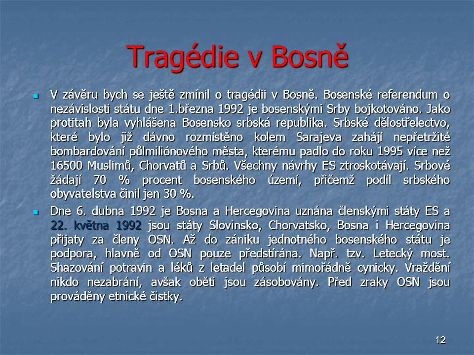 Tragédie v Bosně
