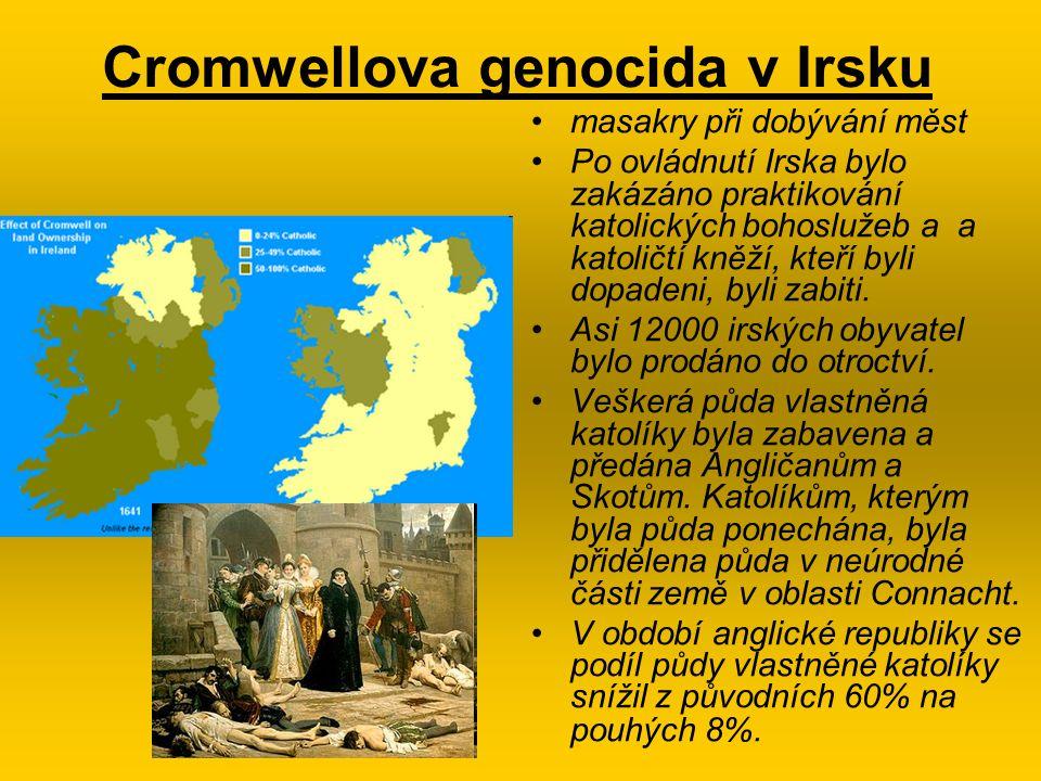 Cromwellova genocida v Irsku