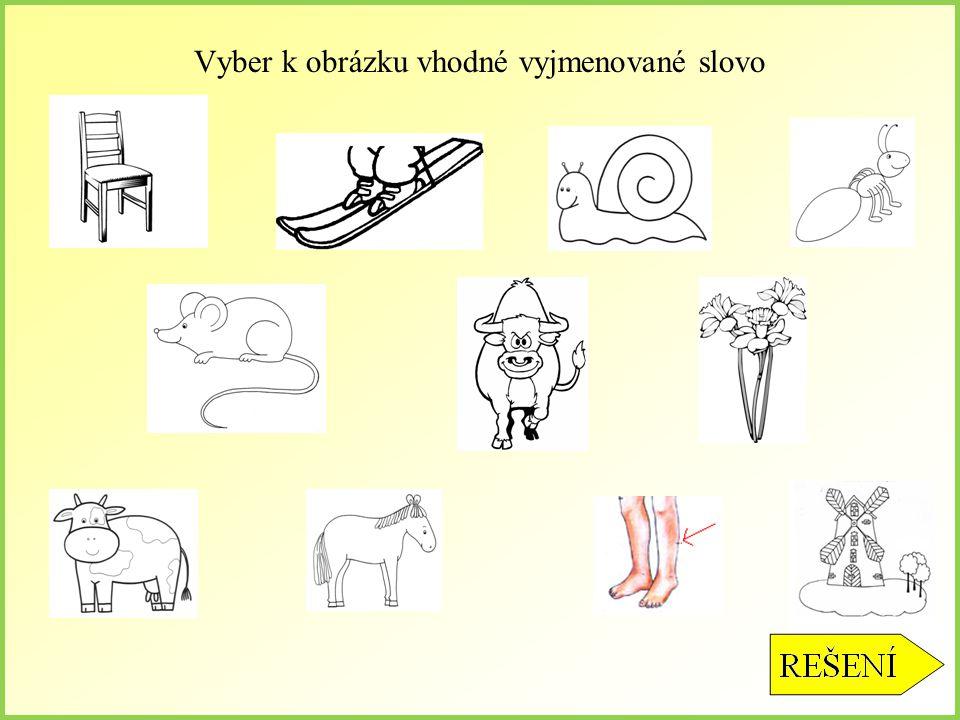 Vyber k obrázku vhodné vyjmenované slovo