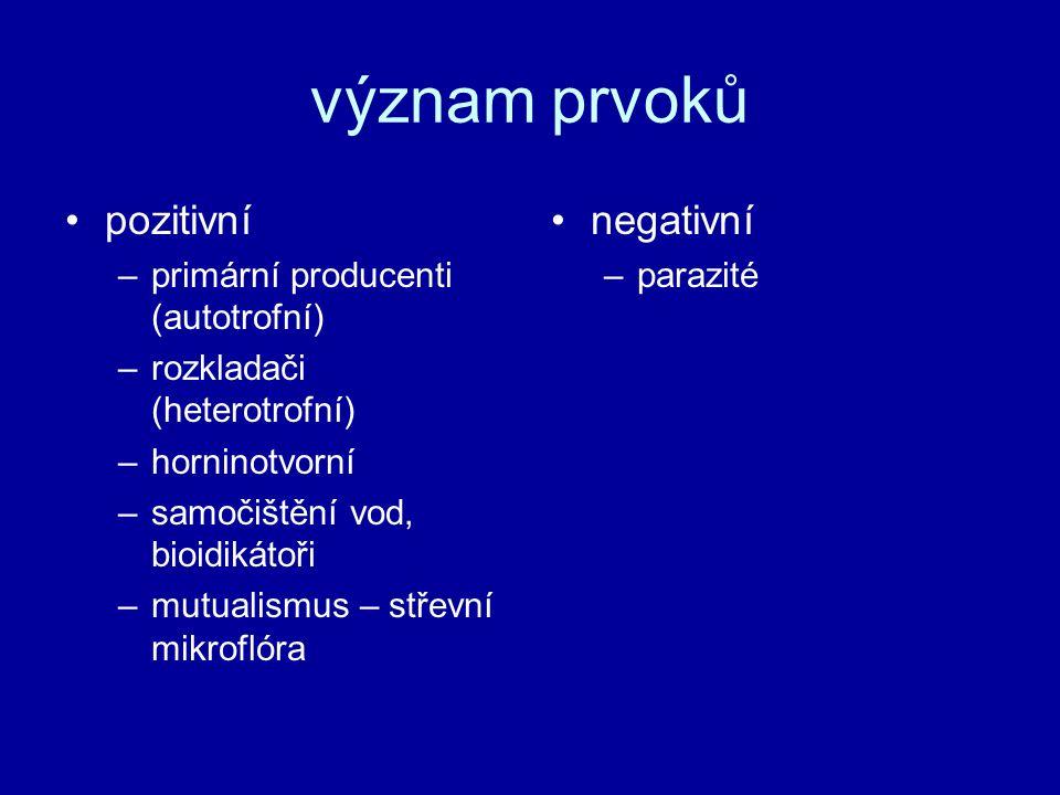 význam prvoků pozitivní negativní primární producenti (autotrofní)