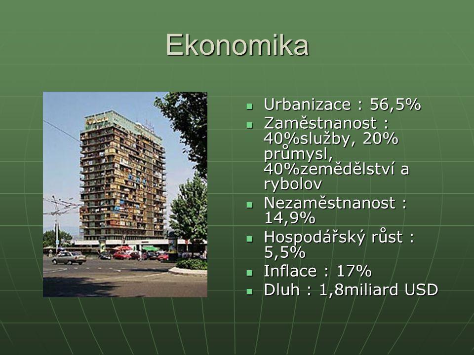 Ekonomika Urbanizace : 56,5%