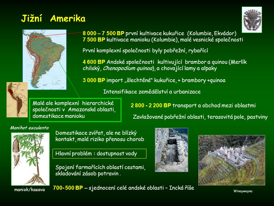 Jižní Amerika 8 000 – 7 500 BP první kultivace kukuřice (Kolumbie, Ekvádor) 7 500 BP kultivace manioku (Kolumbie), malé vesnické společnosti.