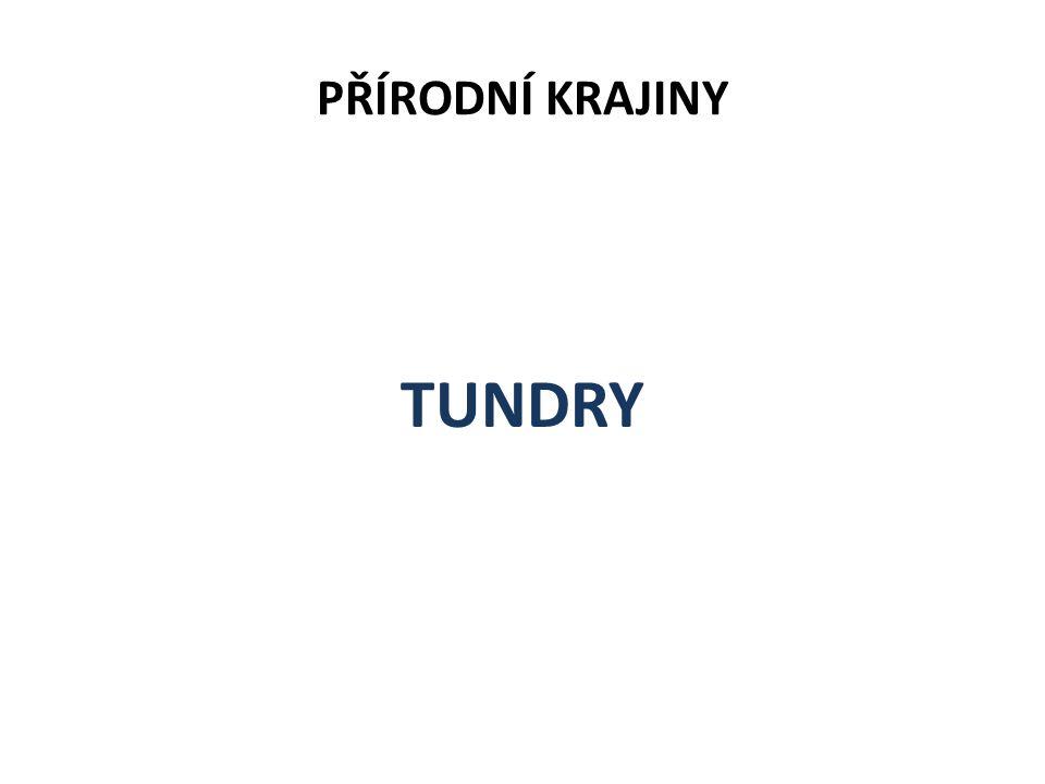 PŘÍRODNÍ KRAJINY TUNDRY