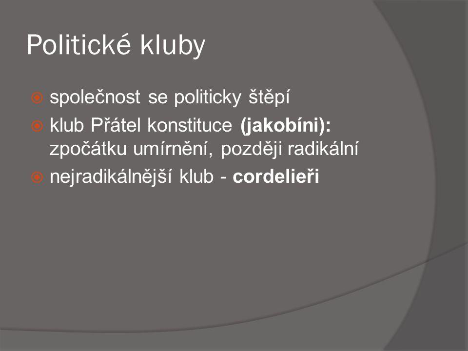 Politické kluby společnost se politicky štěpí